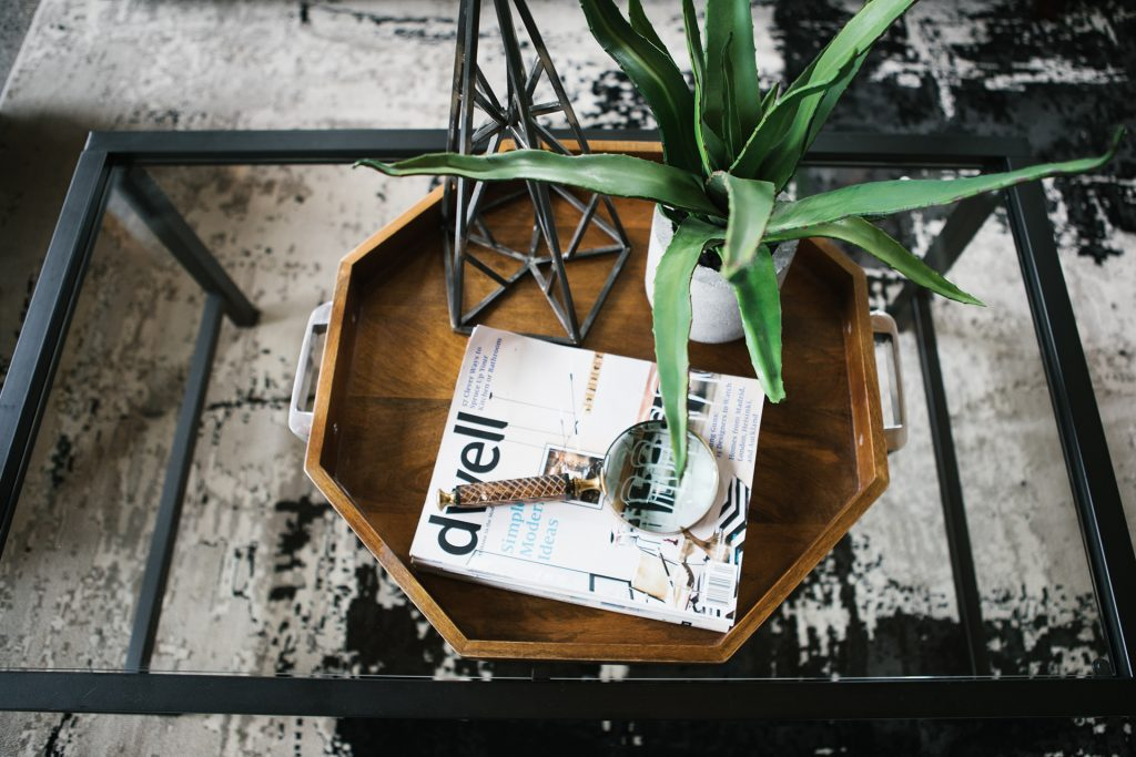 a plant, magnifying glass, a magazine on top of a table